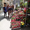 Vadis, Karly, Cam and Colie - greeting us on our first day in Barcelona