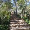 Stairway in Guell Parc grounds