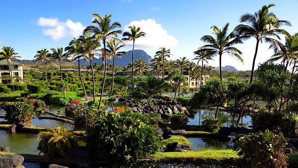 2016a Hawaii