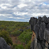 View of some of Chillagoe's karst towers.