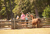 2017-09-03 Lazy 5 Ranch _kbd8695