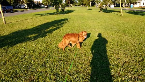 morning shadow selfie