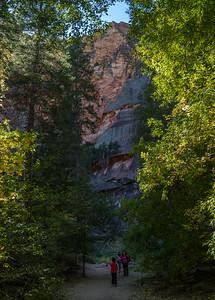 West fork trail, Oak Creek Canyon