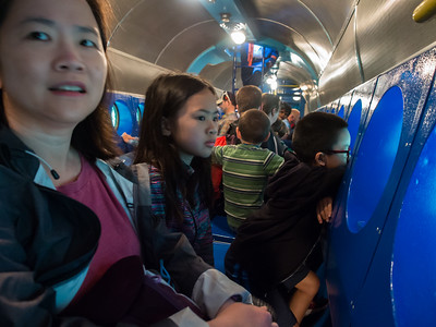 Inside the Finding Nemo submarine ride.