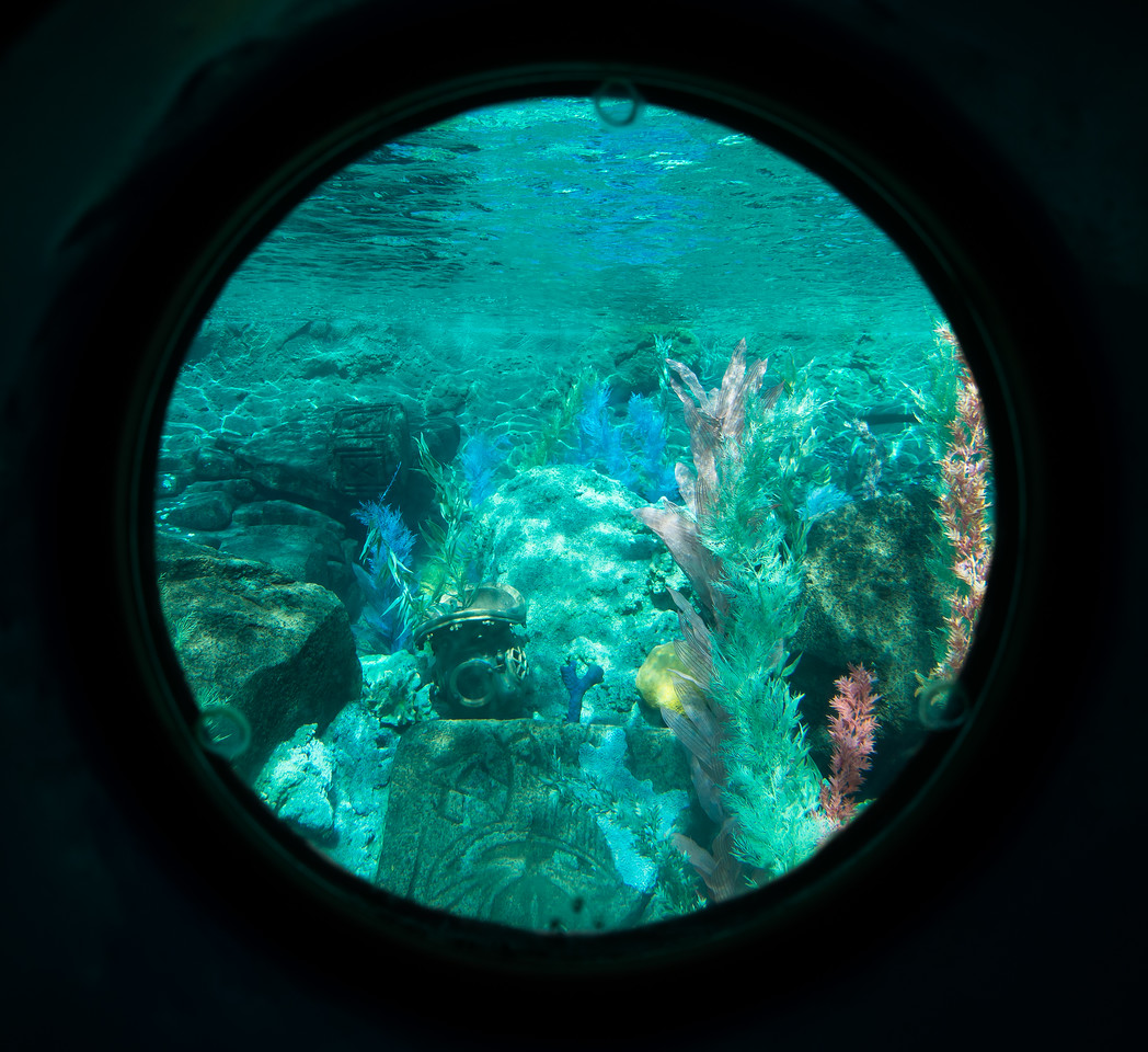 Porthole view from Finding Nemo submarine ride.