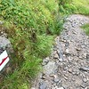The trails are also well blazed all along the way<br /> Red/white indicate the alpine trails