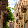 2017 Italy Trip 9_17-0532