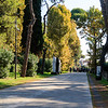 2017 Italy Trip 9_17-1138