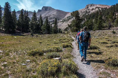 Off for a hike in the Alpine forest of Great Basin NP.  Who knew such beauty existed in Nevada?