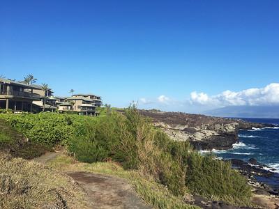 grounds of Kapalua Bay Villas