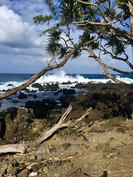 2017 Maui