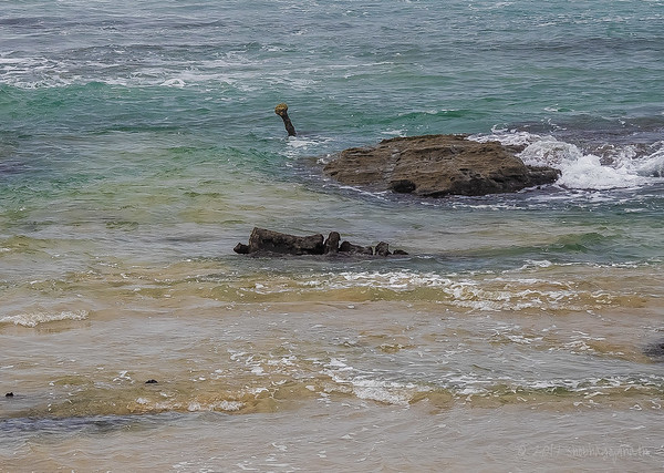 The winch, the steel frame and anchor of the W.B Godfrey wreck