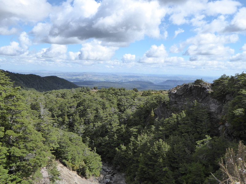 View from Mangawhero Falls Track