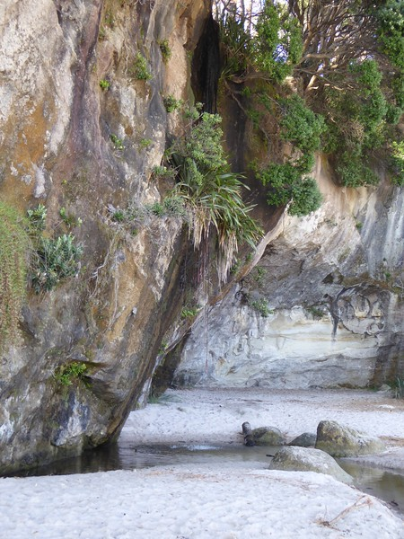 Wispy waterfall at Cathedral Cove