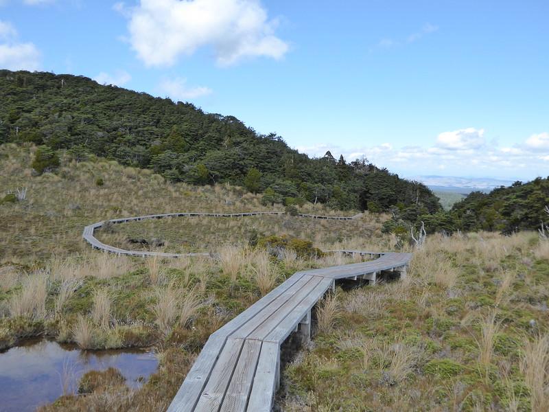 Waitonga Falls Track boardwalks