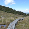 Waitonga Falls Track boardwalks