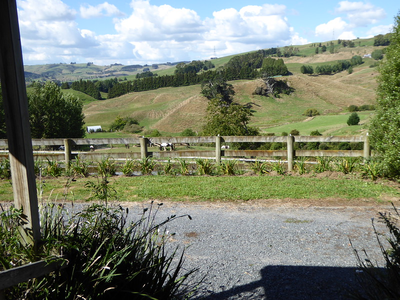 View from cottage at Kirapiro