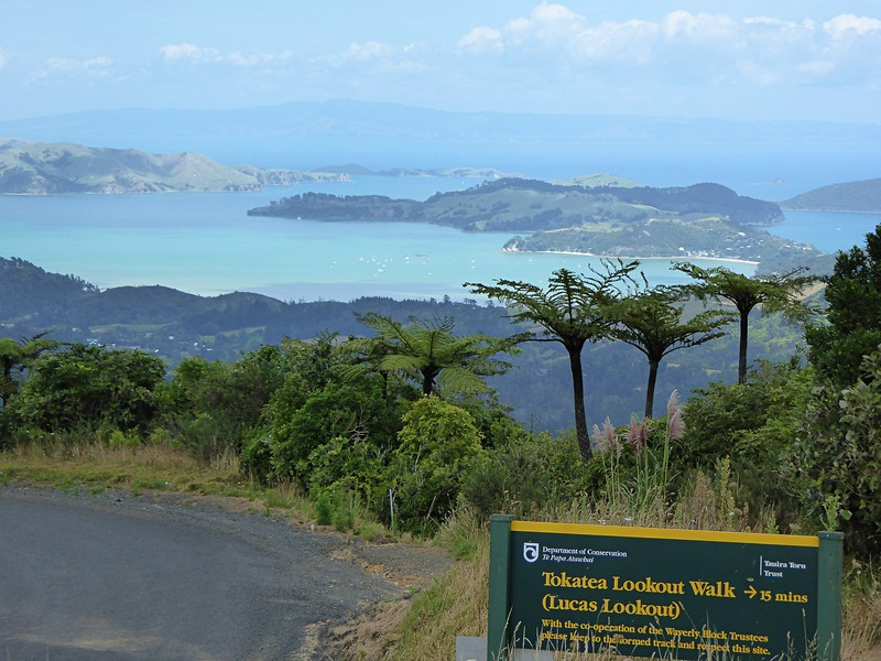 Beginning of Tokatea Lookout Track