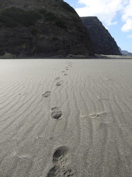 Footsteps on Karekare Beach (mine)