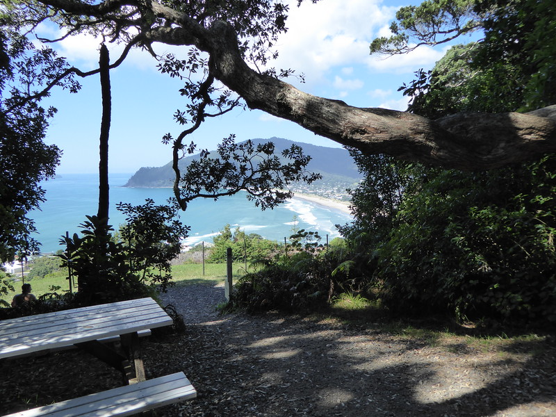 View from track to Mount Paku