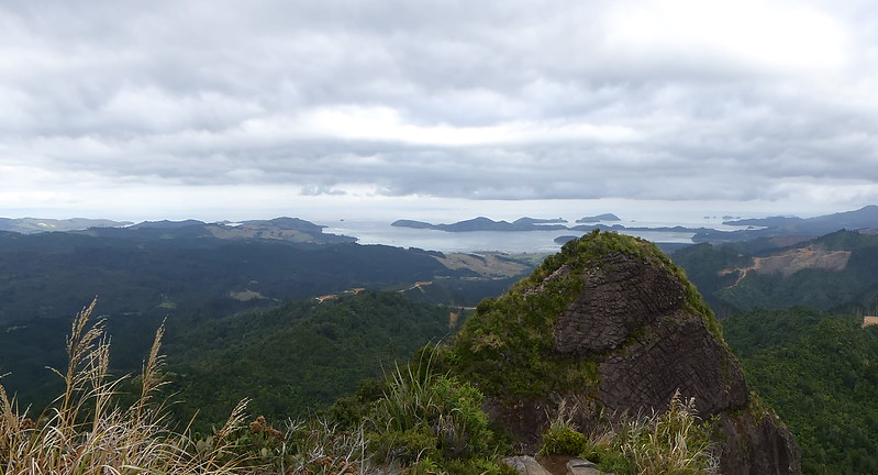 View from Tokatia Lookout