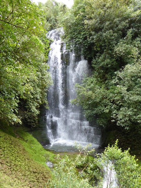 Waitanguru Falls