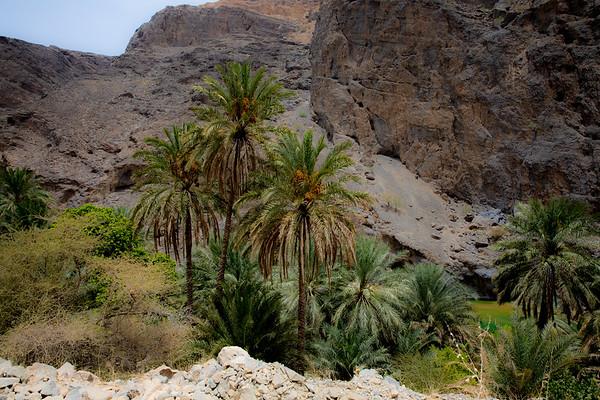 2017 Oman