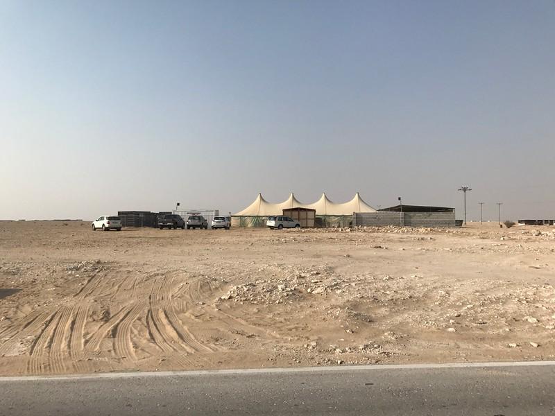 Katar, poušť, útulek pro zvířata