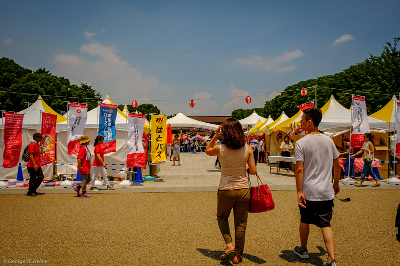 Northern part of Ueno Park - Taiwan Festival.