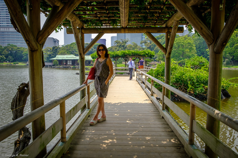 On the bridge to the tea house at Hama-rikyu Gardens