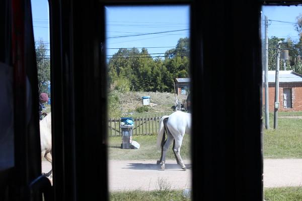 2017 Pimentel Uruguay