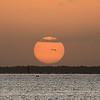 Pelican and Carrabelle Beach sunrise