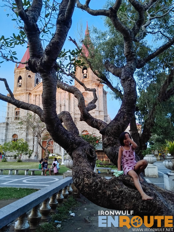 Girl playing at the tree at the Molo Plaza