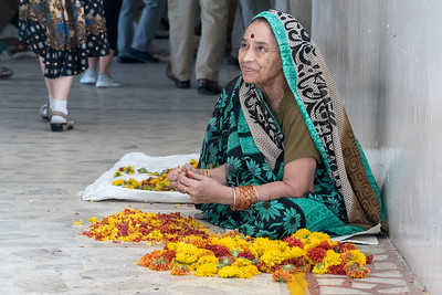 A woman plucks flowers whose petals will become part of new paper.