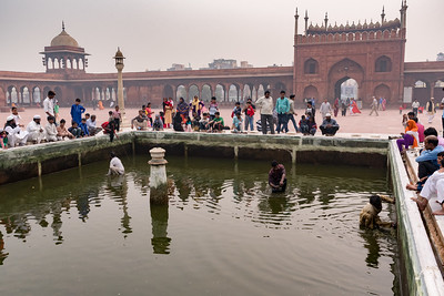 Two men seek coins while a third scrubs algae from the pool at Jama Masjid, Delhi.