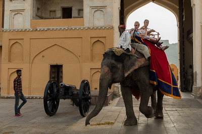 Tourists arrive at the Amber Fort via elephant - Jaipur.