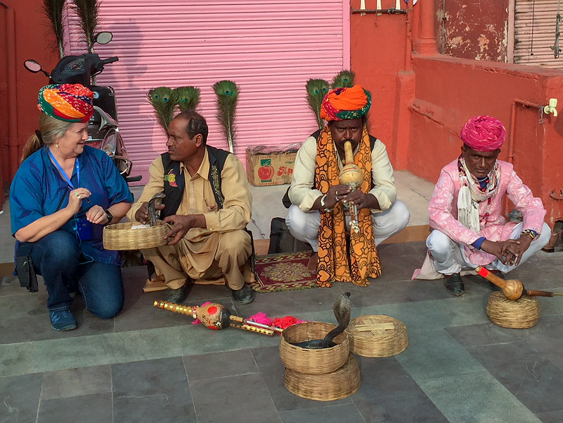 Pam is about to touch a cobra, in Jaipur India.
