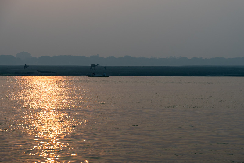 At sunrise, a horse and a camel stroll along the flats adjacent to the Ganges River in Varanasi.