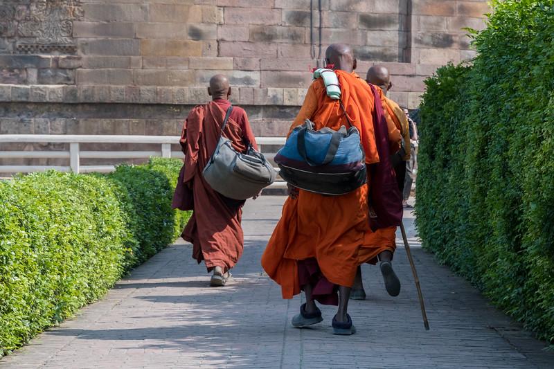Buddhist monks visit Dhamekh Stupa.