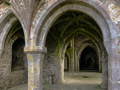 Very well preserved interior of the main section of Kilcooley Abbey. The site was in use until the late 1700s as a summer home home for the local lord.