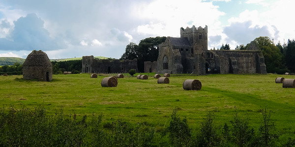 View of the unheralded Kilcooley Abbey, out in the middle of a farmer's fielded with no crowds or people to speak of.