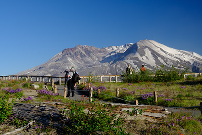 Mt St Helens Afternoon