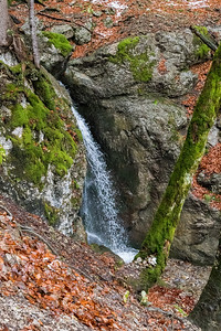 The trail climbs steeply beside a brook, with many beautiful waterfalls.