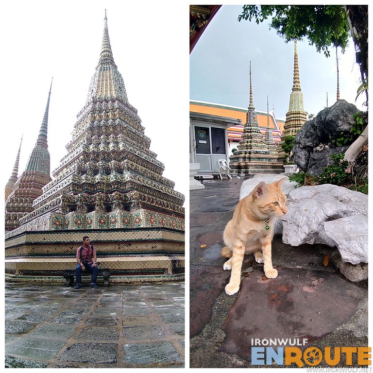 Wat Pho chedi and a cat