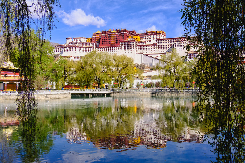 Potala Palace Reflection