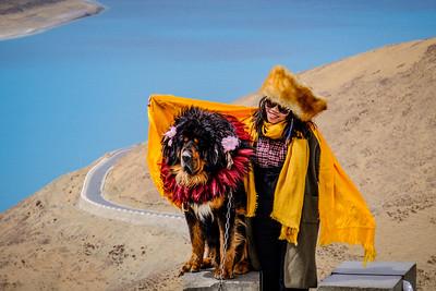 Posing with Tibetan Mastiff