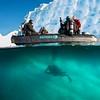 Polar Diving Antarctica Adventure Cruise