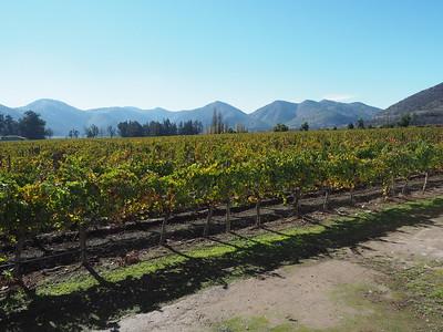 2017-05-17 Santiago Winery