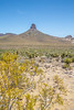 Route 66 Road Trip - Day 7: Flagstaff -> Las Vegas