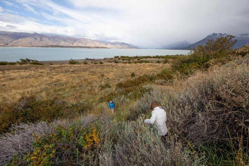 Ledovec Perito Moreno Patagonie